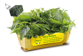 Nettle Portions (20 g)
